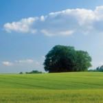 klimaschutz_energieversorgung